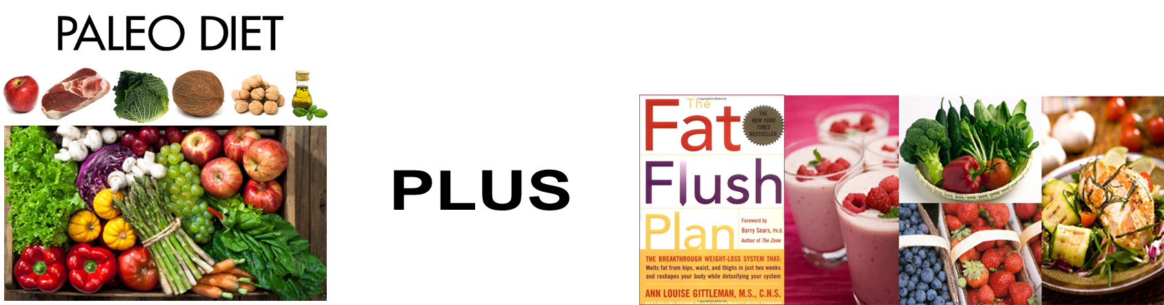 fat flush banner copy